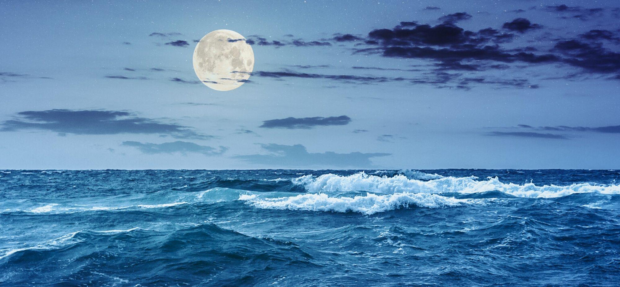Sailing Resoluta
